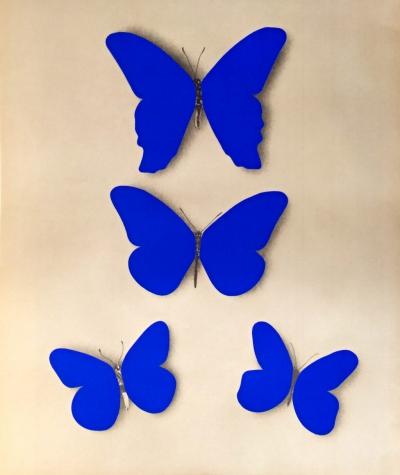 Kolář Jiří (1914 - 2002) : Motýli