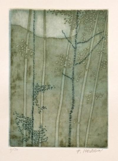 Storchová Hana (1936) : Listnatý háj