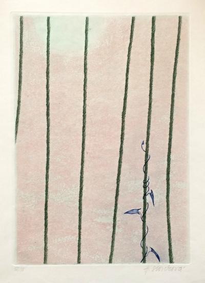 Storchová Hana (1936) : Svlačec