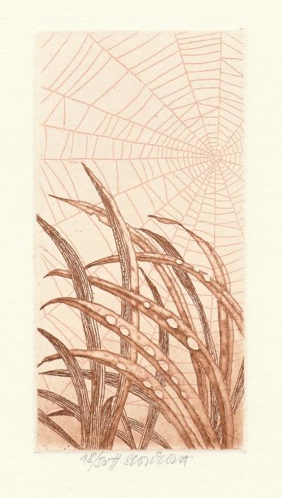 Storchová Hana (1936) : Zlatá tráva